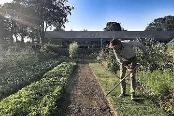 Dermot raking the vegetable beds at the Green Barn